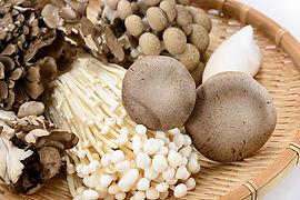 Assorted Mushroom Image.jpg