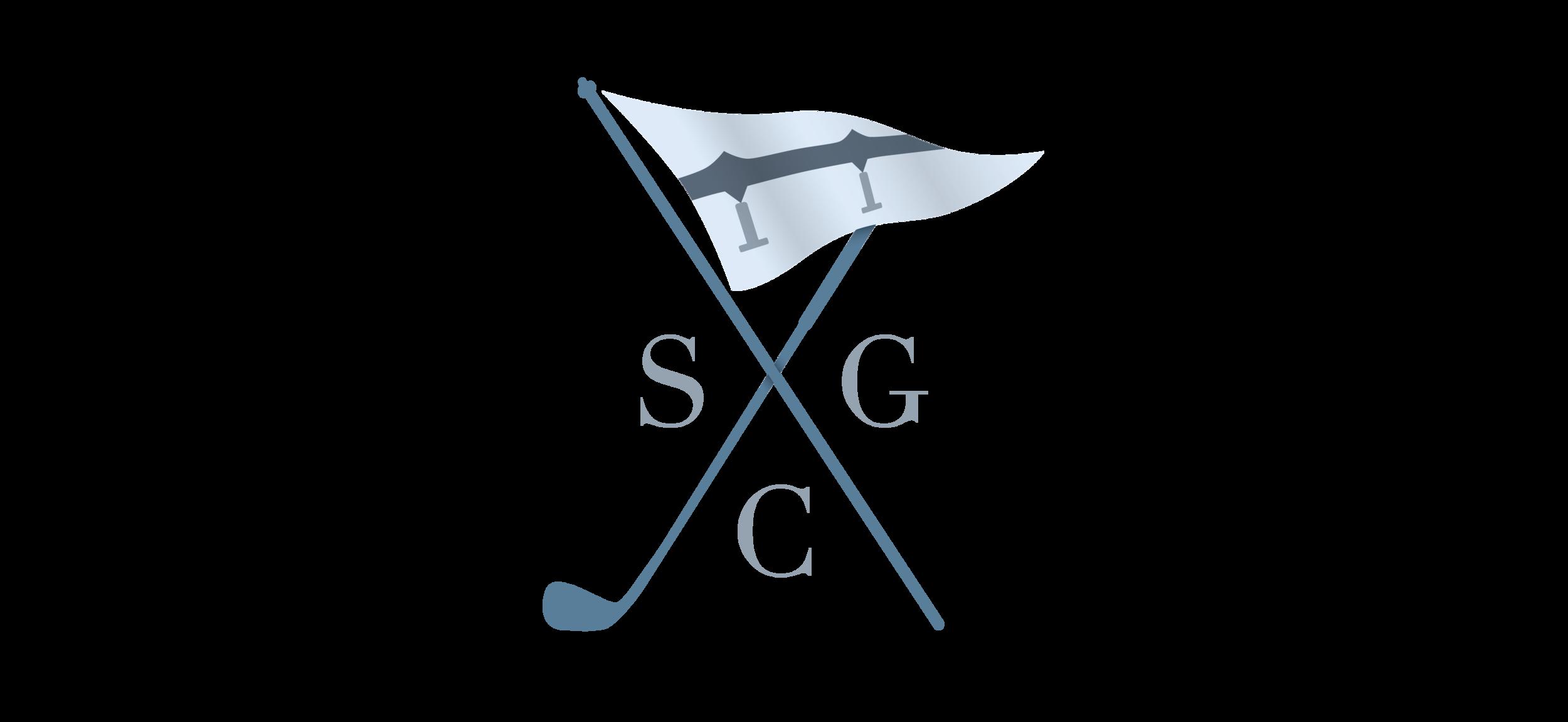 Skyway_logo.png