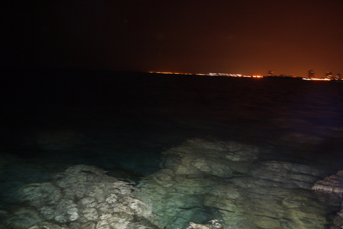 The Chicago waterfront at night. I was surprised to see all that rock under the surprisingly clear water when I used the flash.