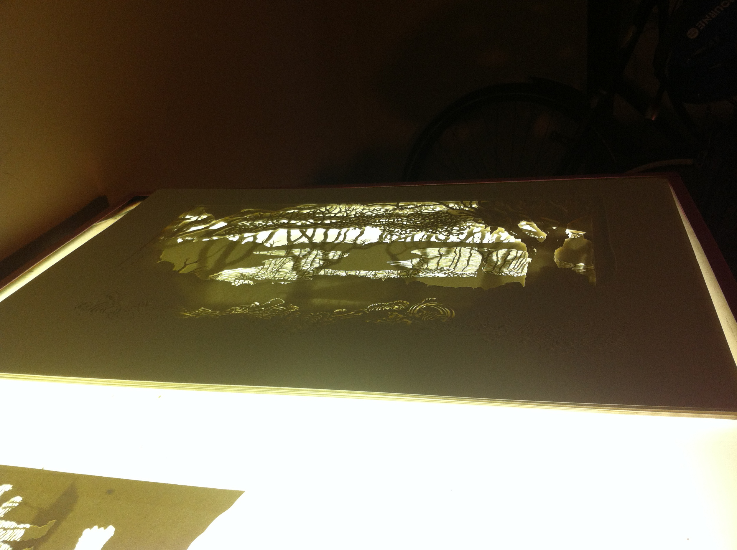Light Box Shot.jpg