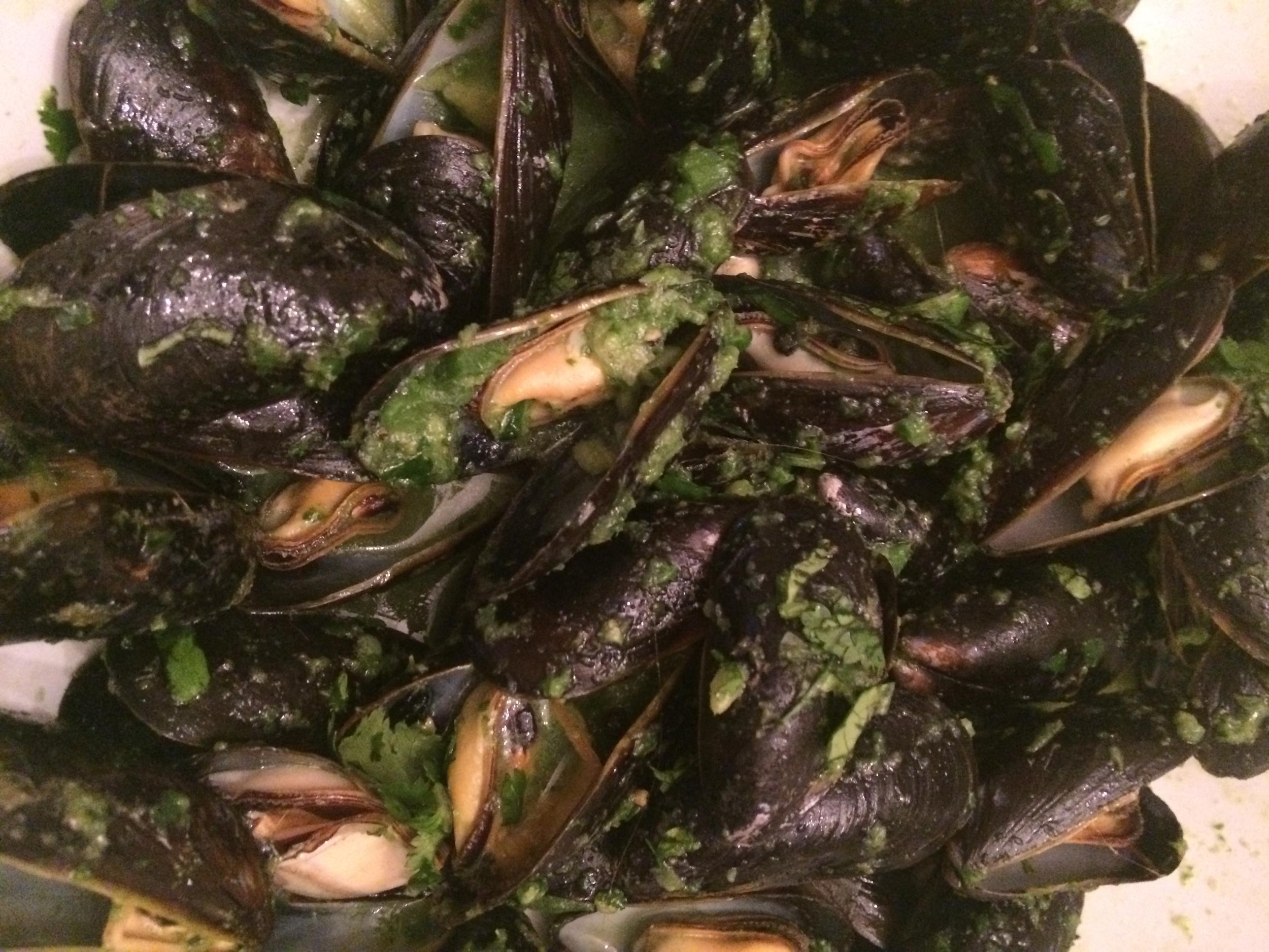 mexican  mussles 2.jpg