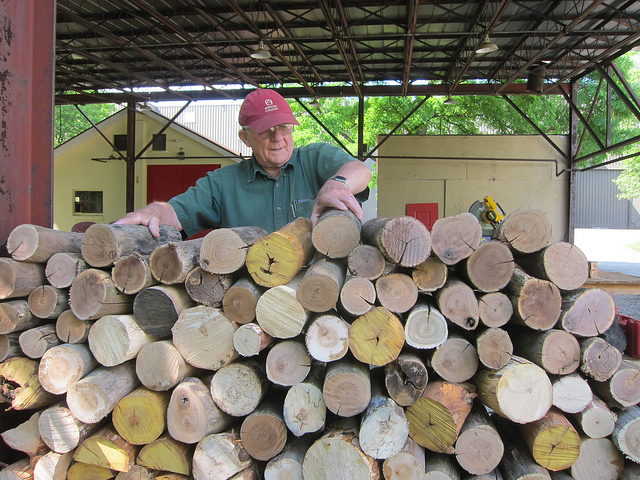 The stack of debarked, hardwood for the cordwood wall (photo by Sara Black)