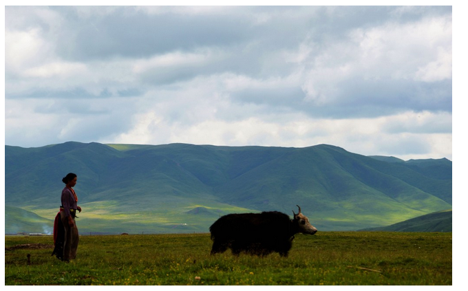 Wild China: Get Lost in Gansu