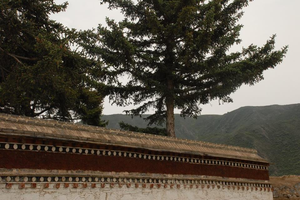 Blog_Kangtsa Monastery._2.jpg