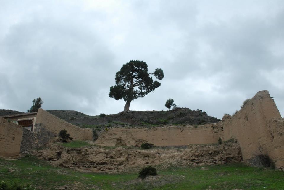 Blog_Kangtsa Monastery._8.jpg