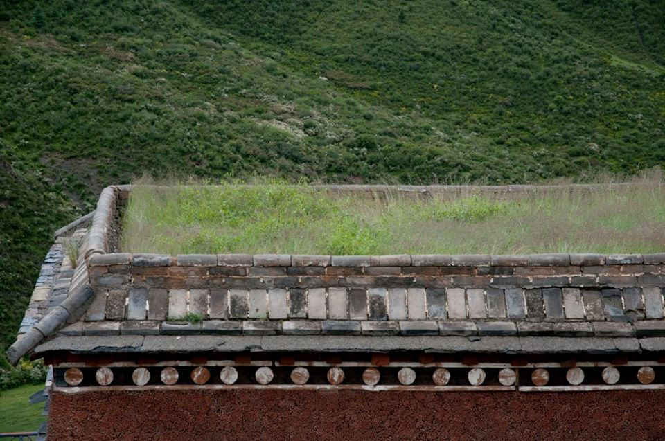Blog_Kangtsa Monastery._7.jpg