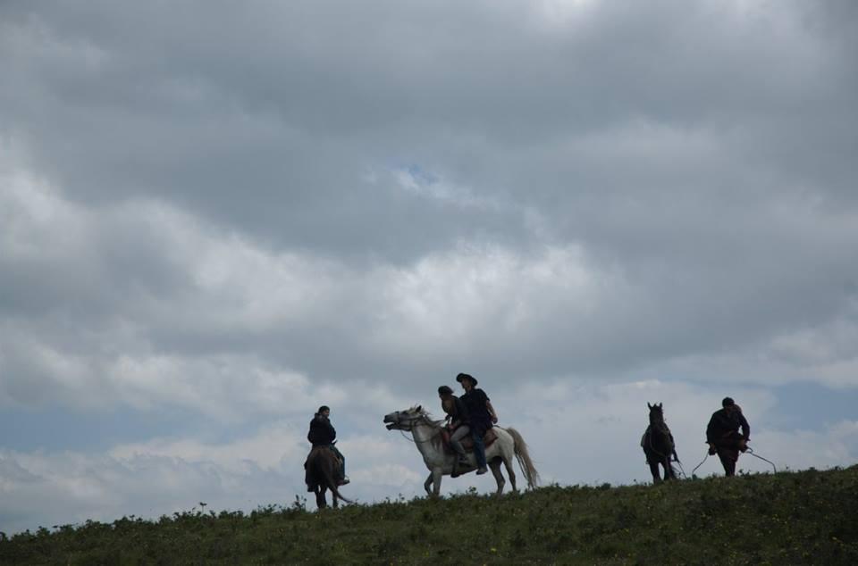 Blog_Horse journey on the grassland_3.jpg