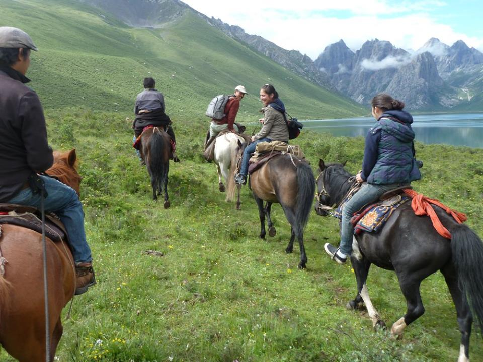 Blog_Horse journey on the grassland_6.jpg