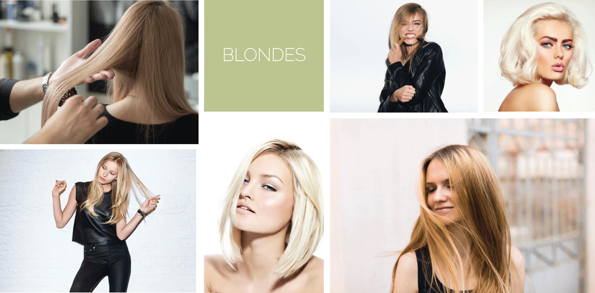 lookbook-blondes.png