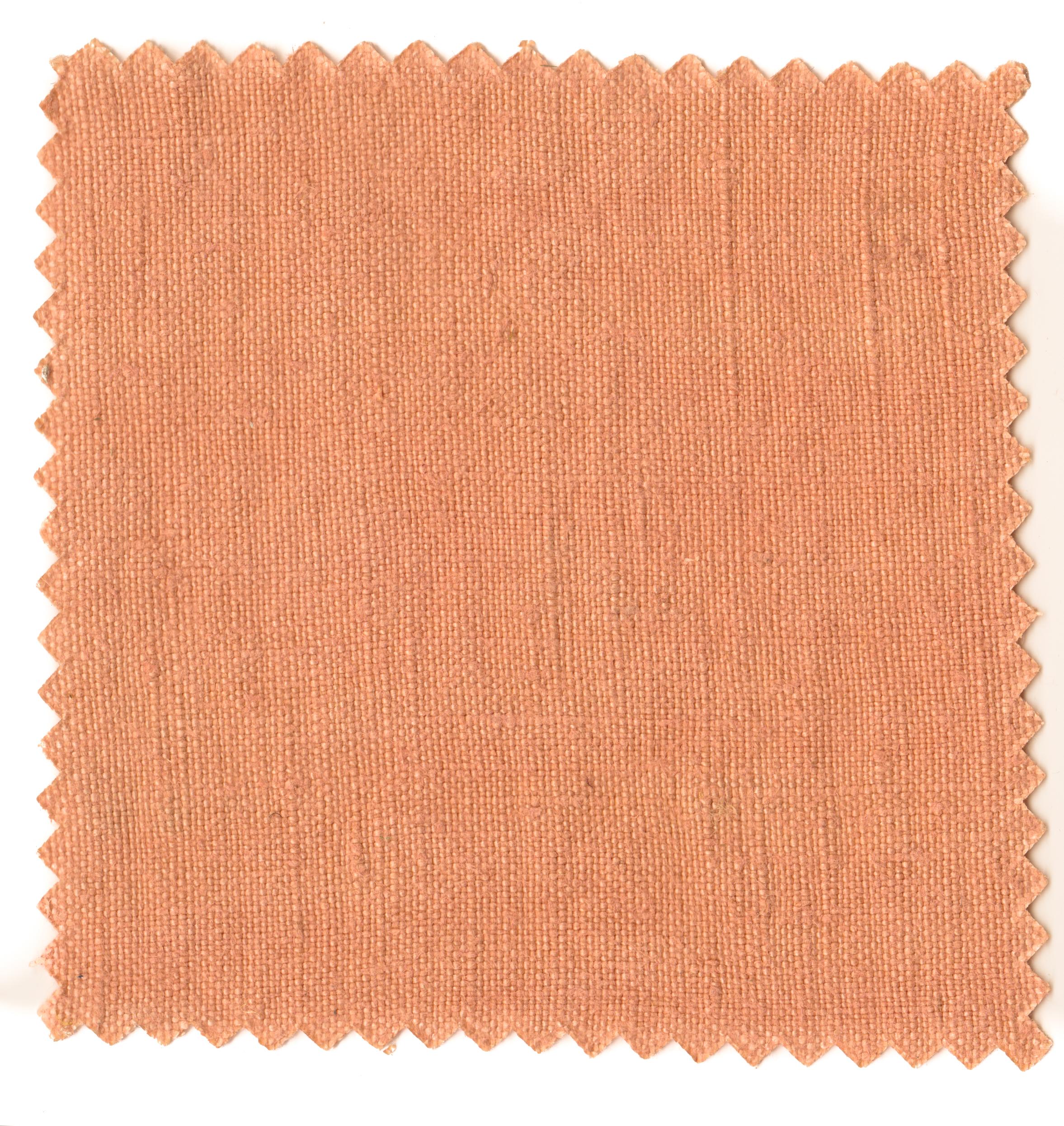 Coral Pinks-3.jpg