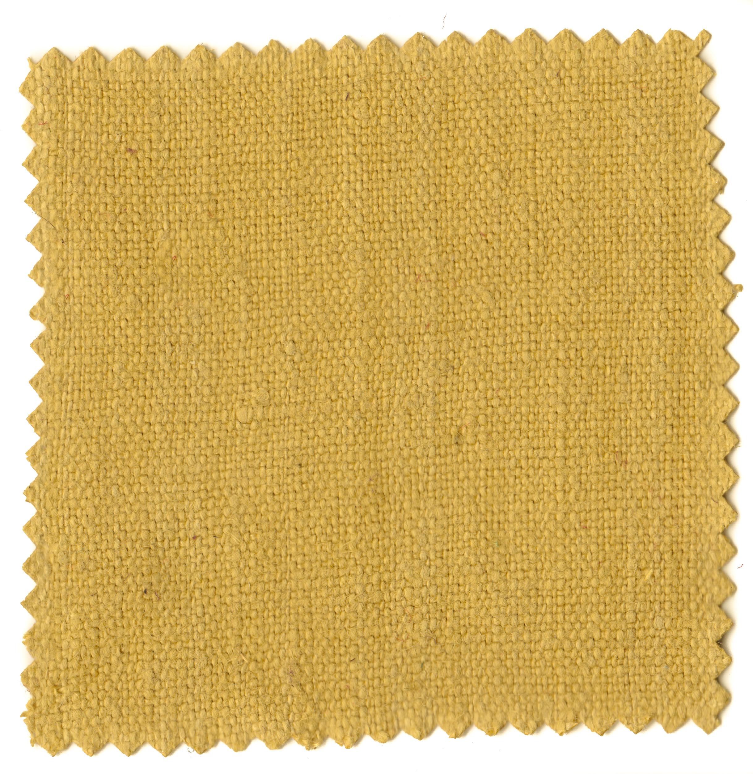 Mustard Greens-2.jpg