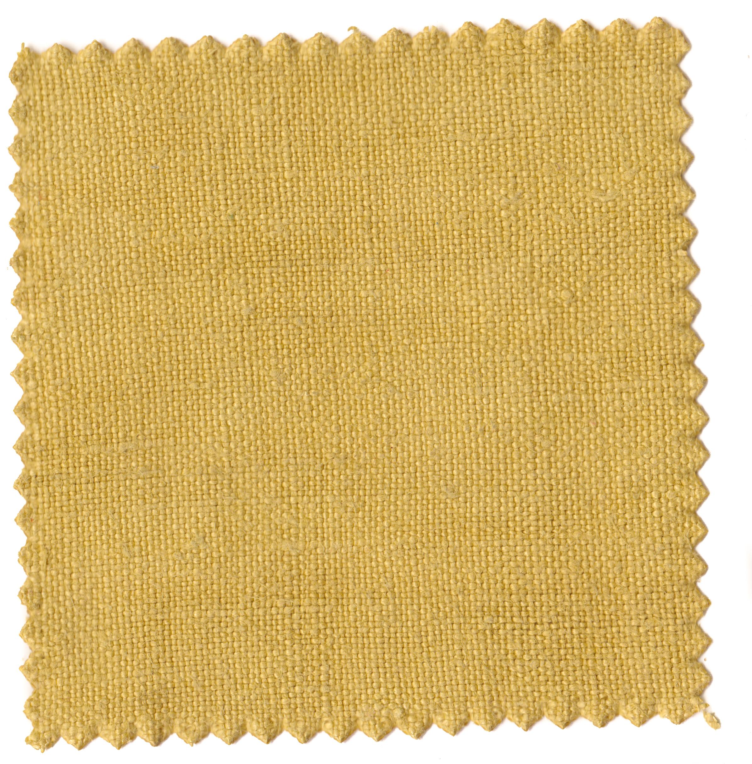 Mustard Greens-3.jpg