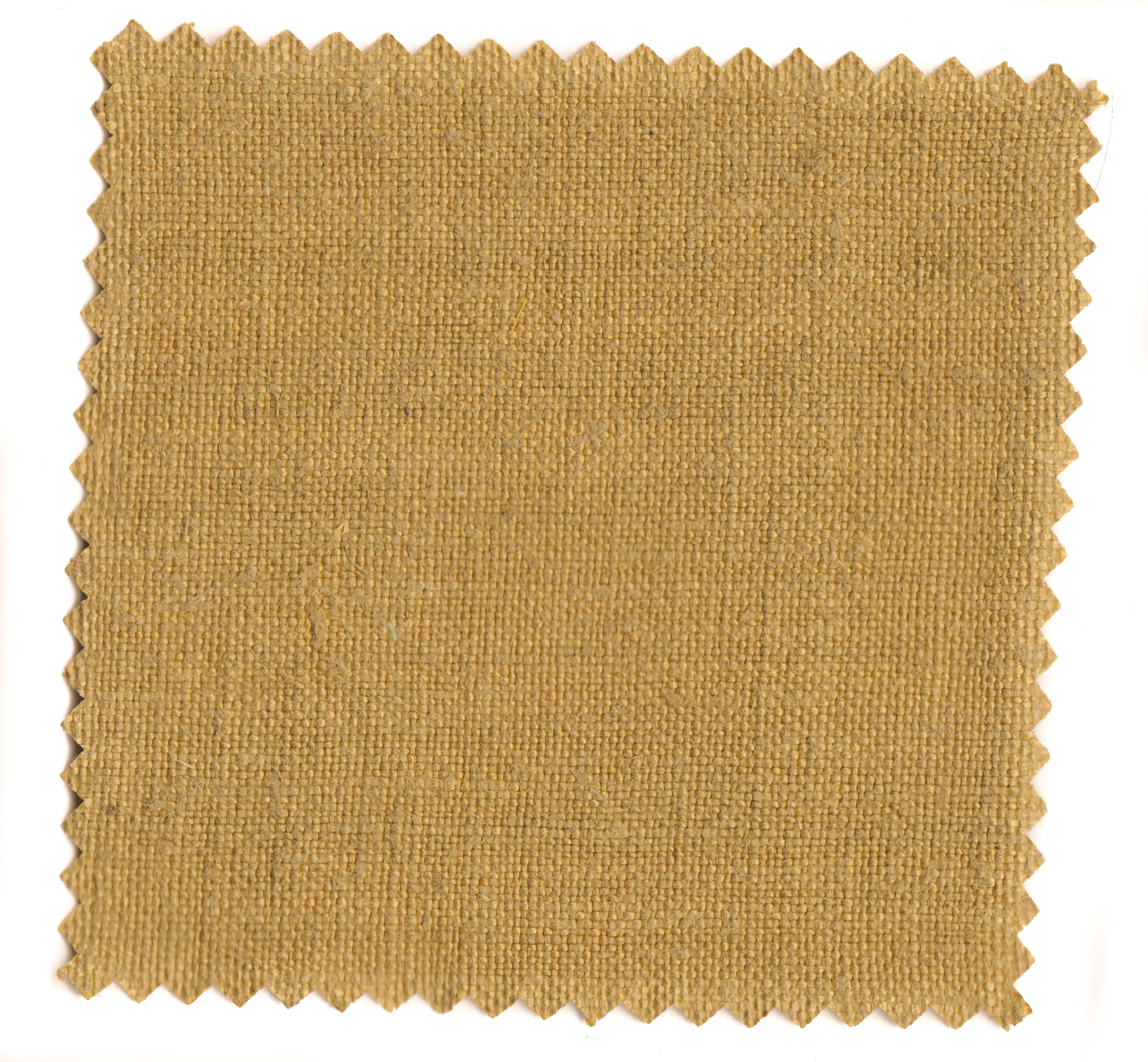 Mustard Greens-6.jpg