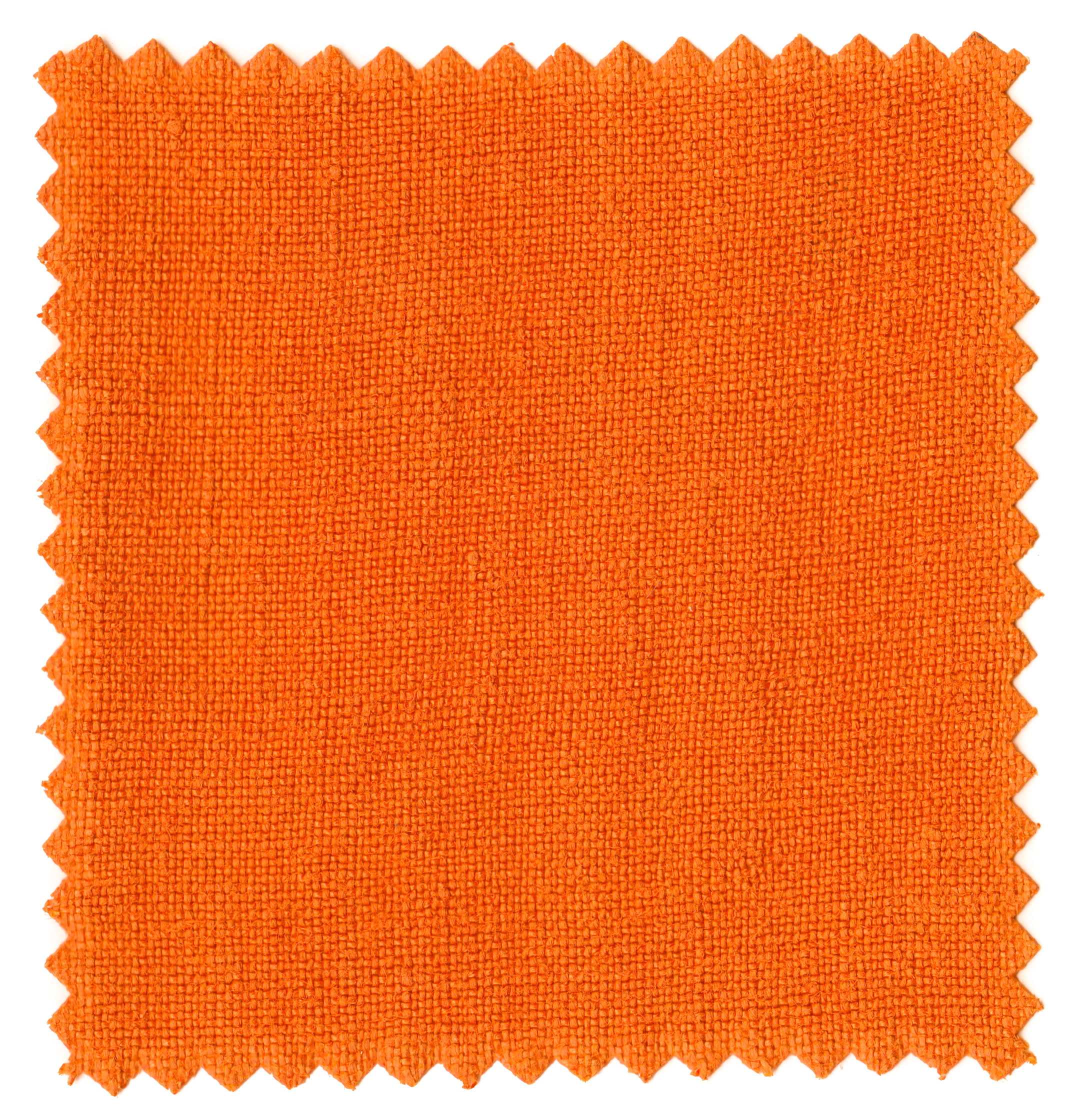 Saffron Umbers-3.jpg