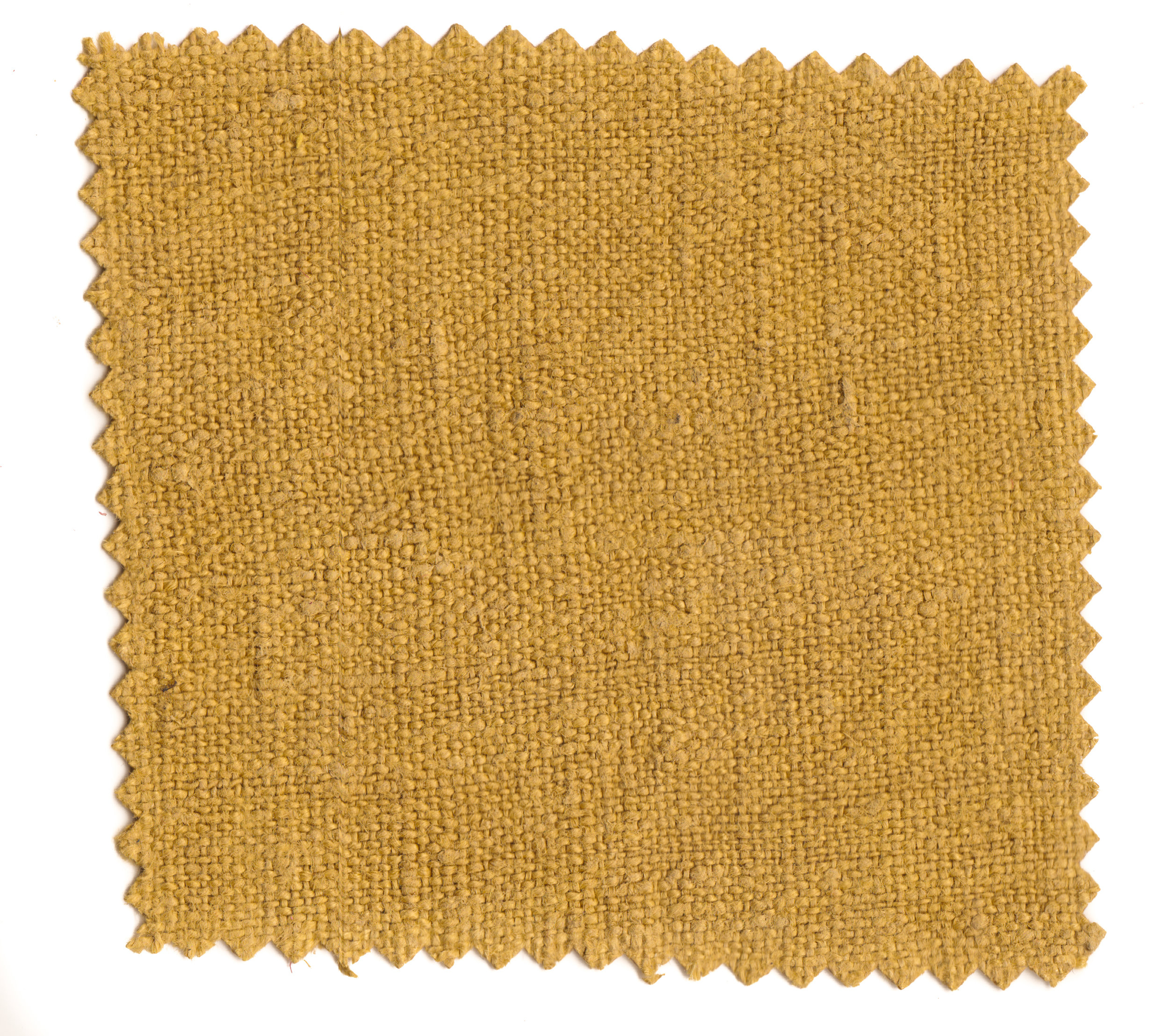 Straw Yellows-4.jpg