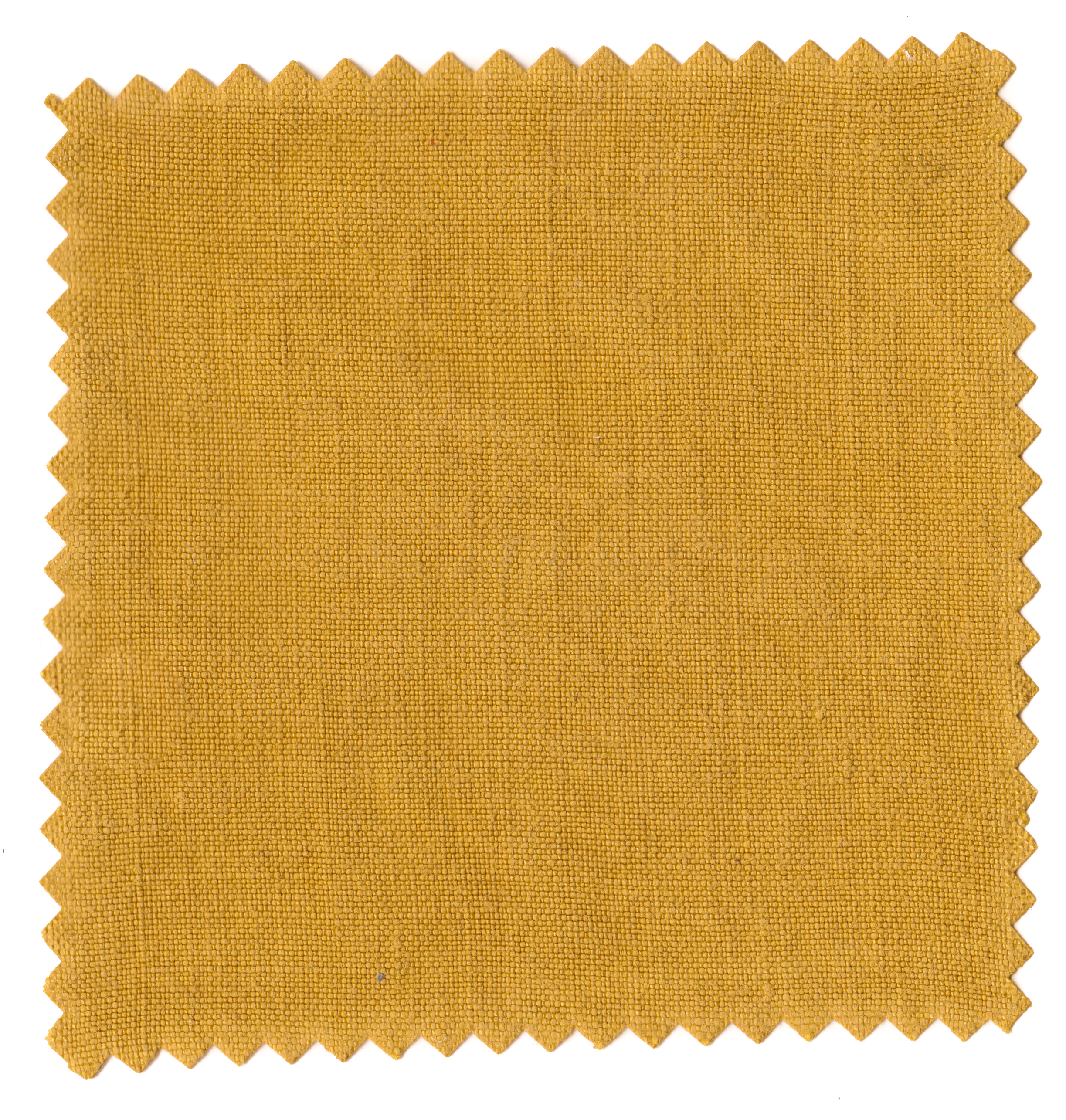 Straw Yellows-3.jpg
