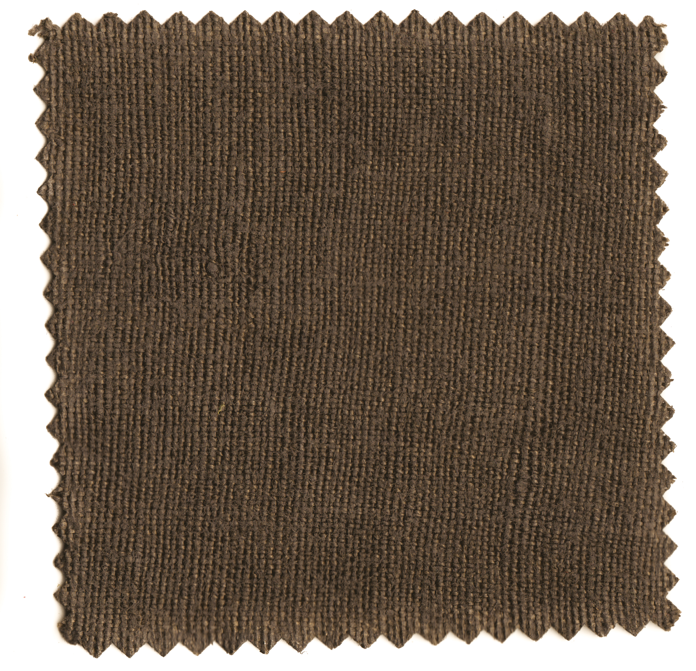 Walnut Browns-5.jpg