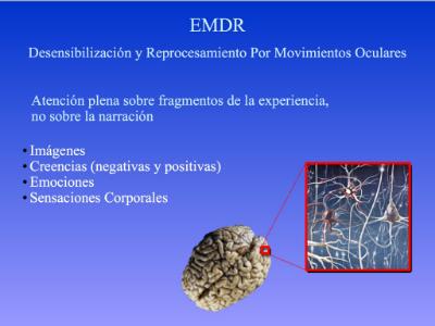 EMDR:Plasticidad cerebral y EMDR