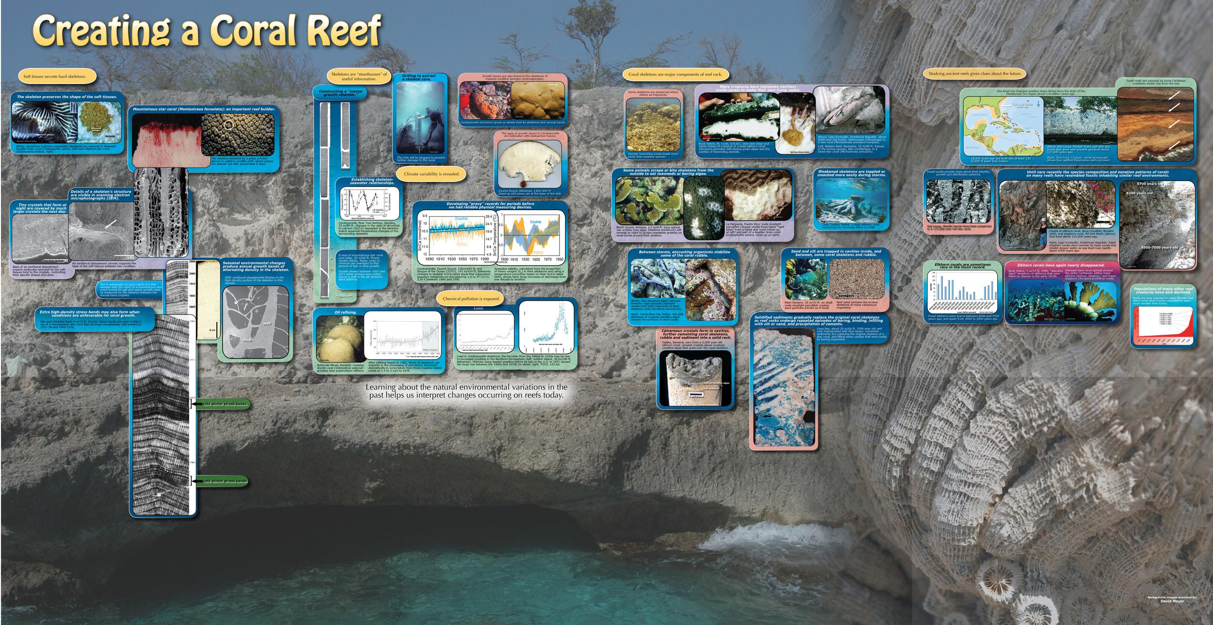 4-Geology -G3.jpg