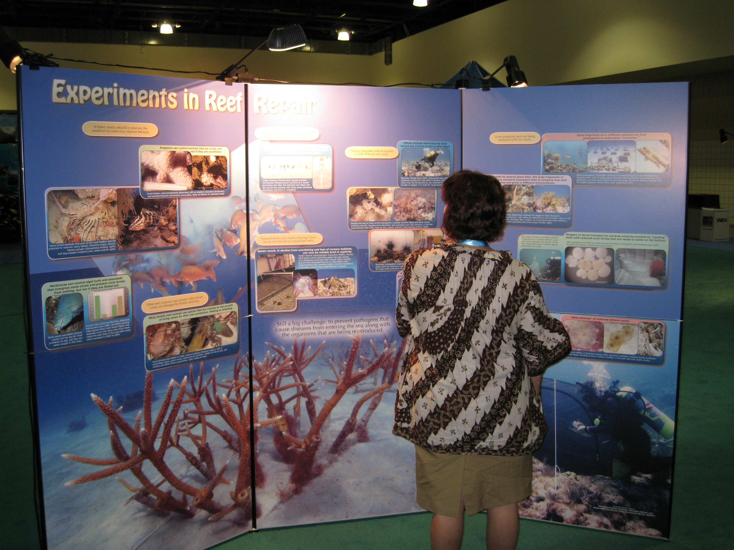 Our-Reef-Doc-Pic1.jpg