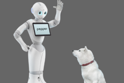 Very soon robots will be just as much a part of the family as pets.