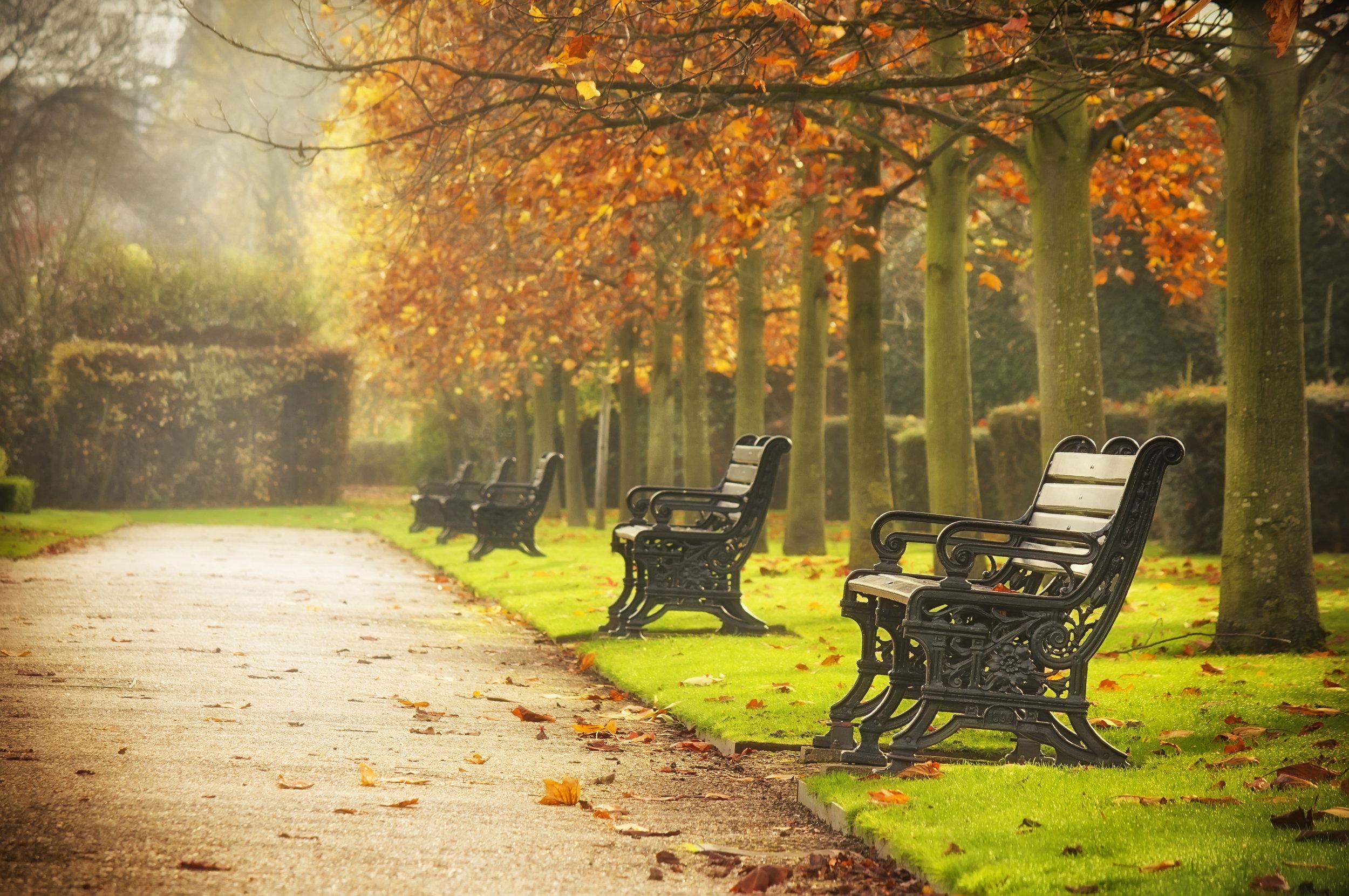Regent's Park.jpg