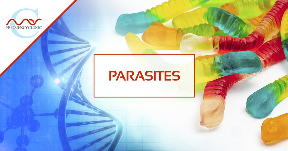 mas-sajady-program-reviews-frequency-parasites.png
