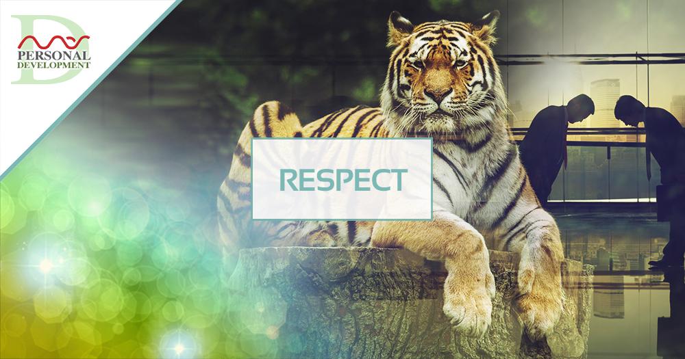 respect-mas-sajady-programs-personal-development.png