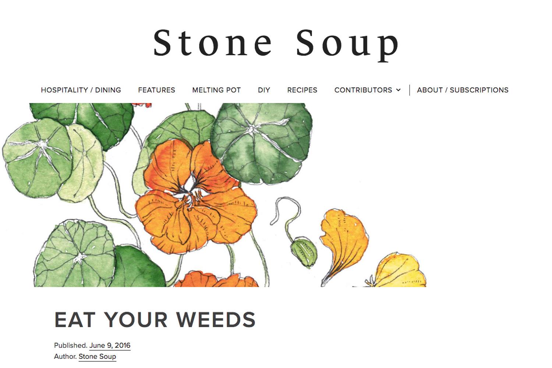 Erin-Ellis-watercolor-botanical-illustration-for-Stone-Soup-Syndicate.jpg