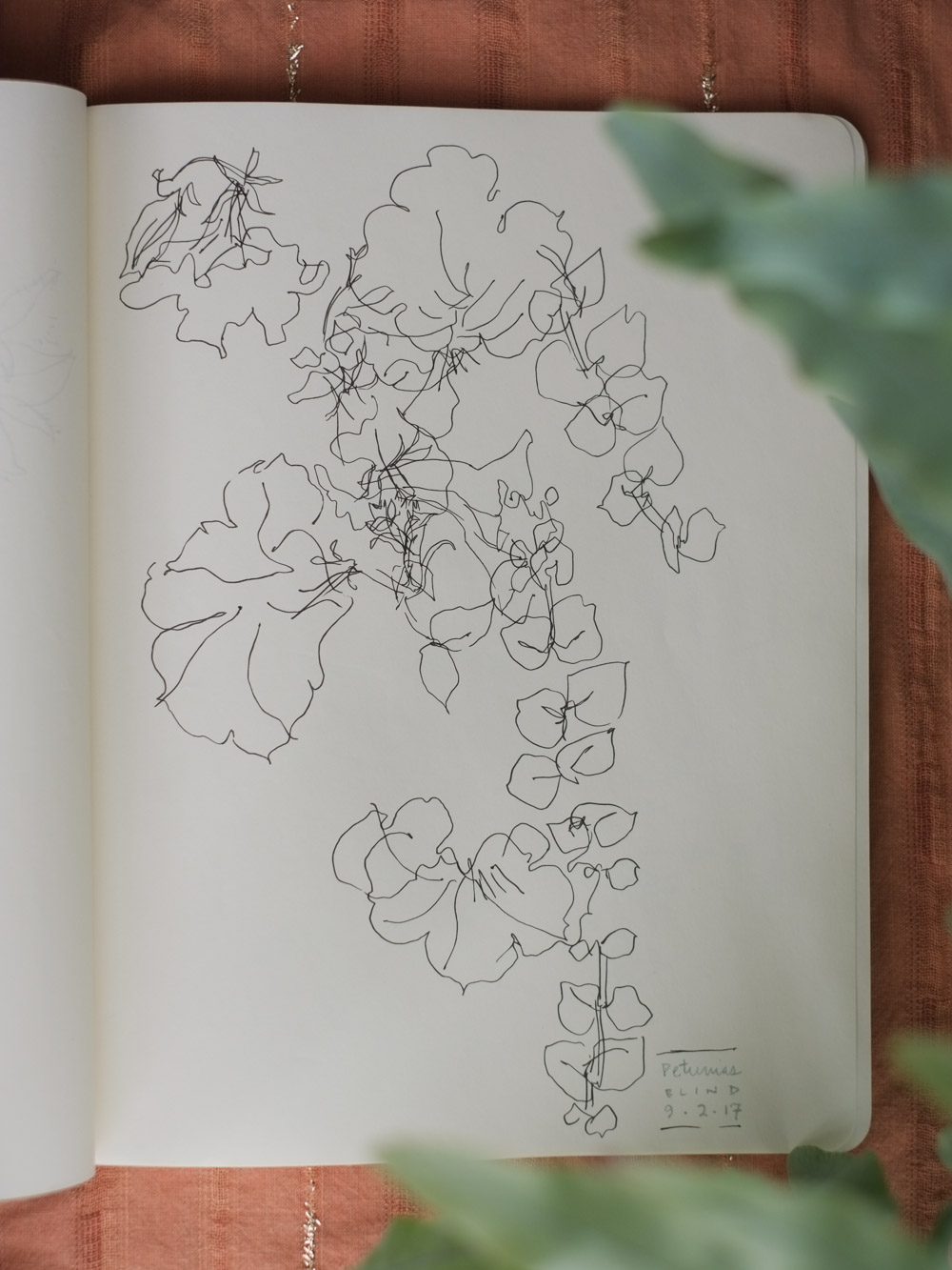 Erin_Ellis_daily_botanical_blind_drawings_sept_2017.jpg-2.jpg