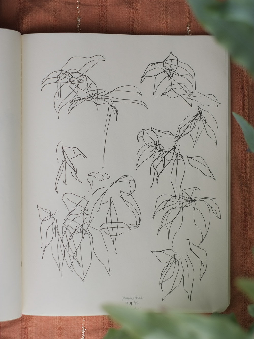 Erin_Ellis_daily_botanical_blind_drawings_sept_2017.jpg-4.jpg