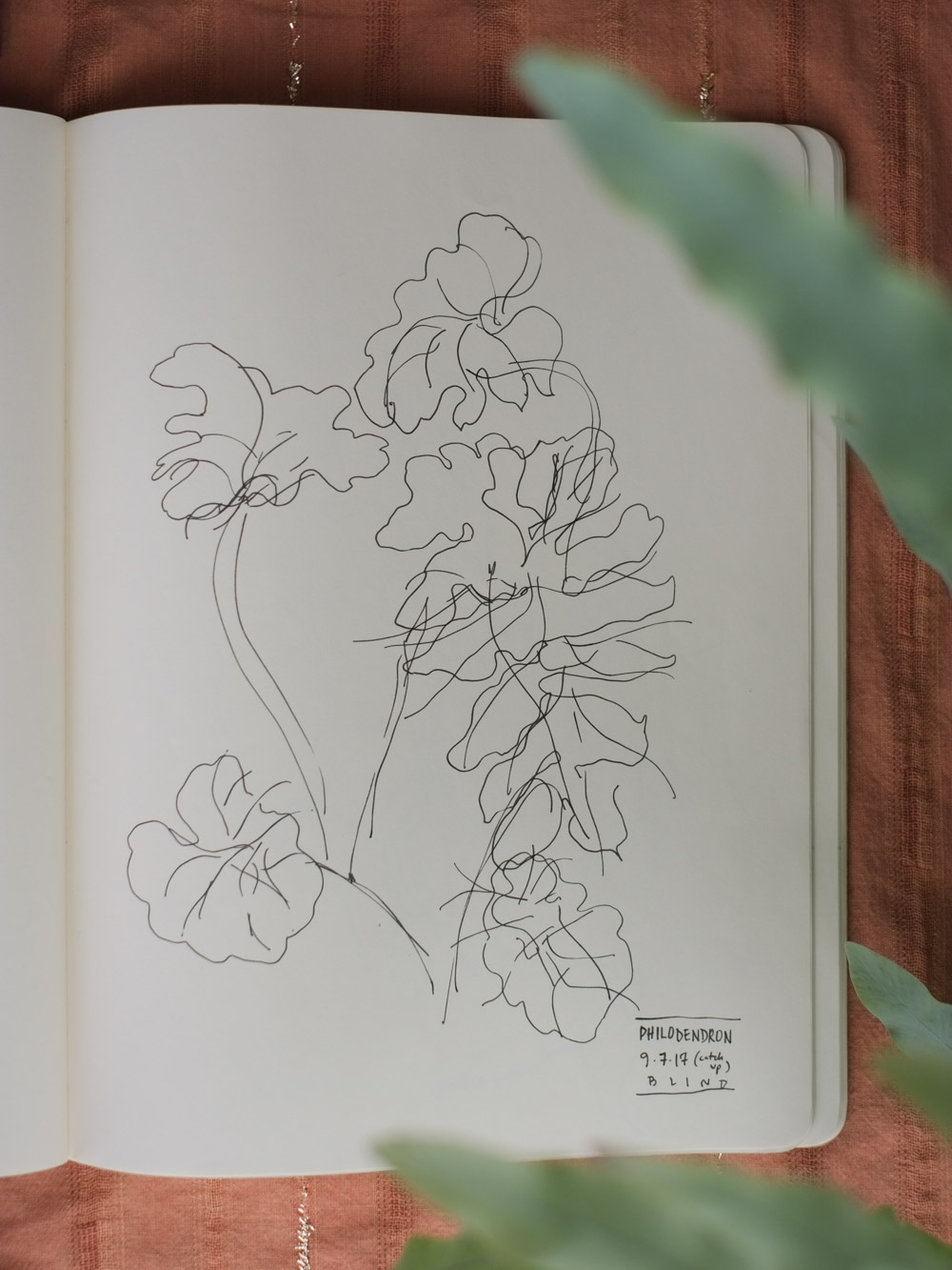 Erin_Ellis_daily_botanical_blind_drawings_sept_2017.jpg-14.jpg