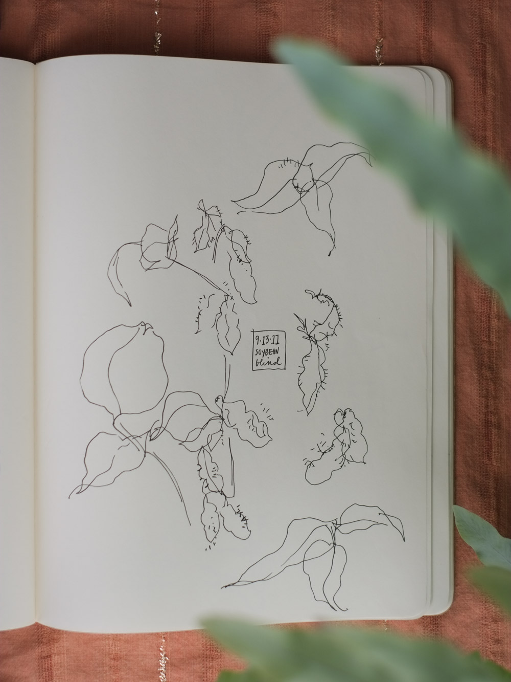 Erin_Ellis_daily_botanical_blind_drawings_sept_2017.jpg-15.jpg