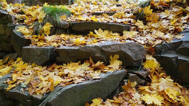 stone-stairway-1783227_640.jpg