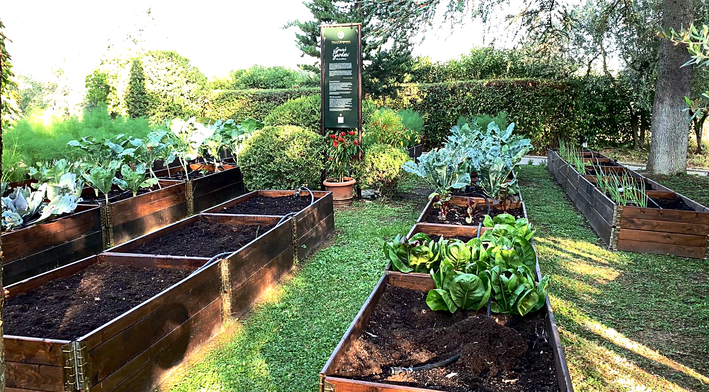 The hotel's kitchen garden. We savoured some produce from here both nights we ate in the restaurant.