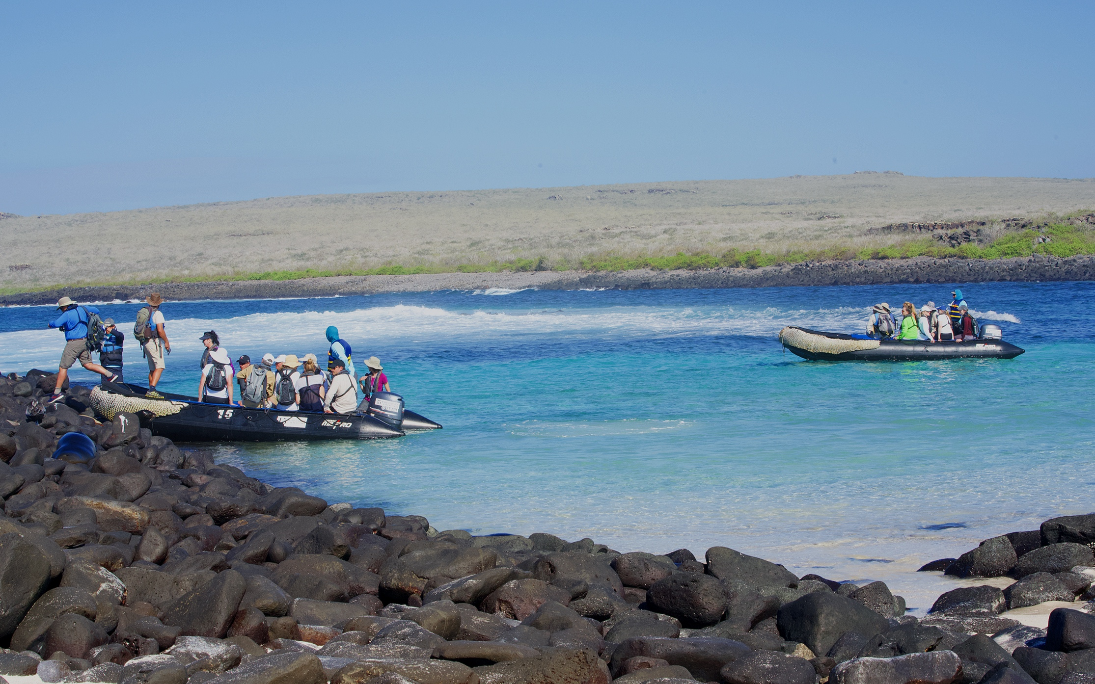 Our zodiacs arriving at Punta Suarez.