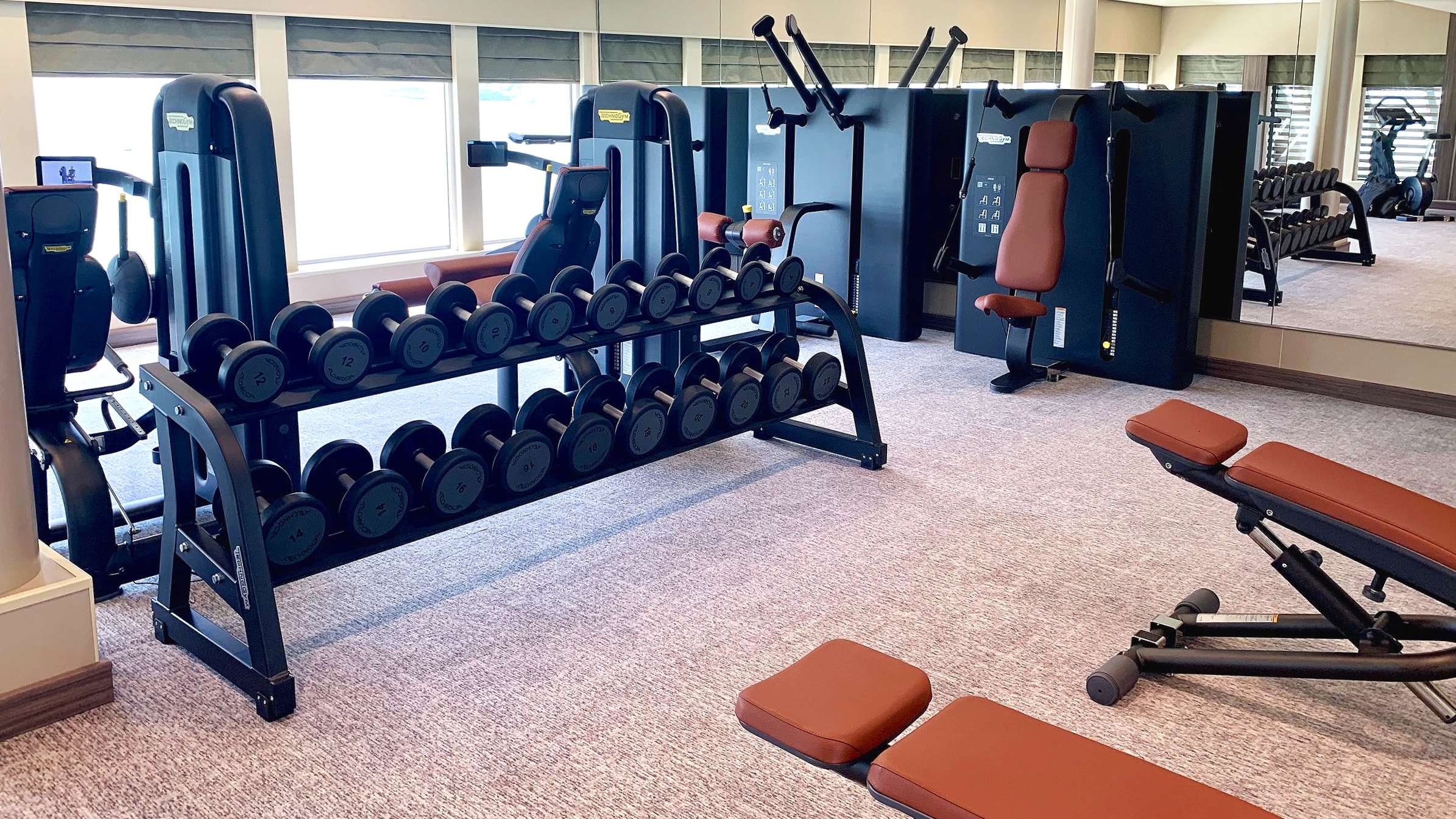 There are plenty of free weights too.