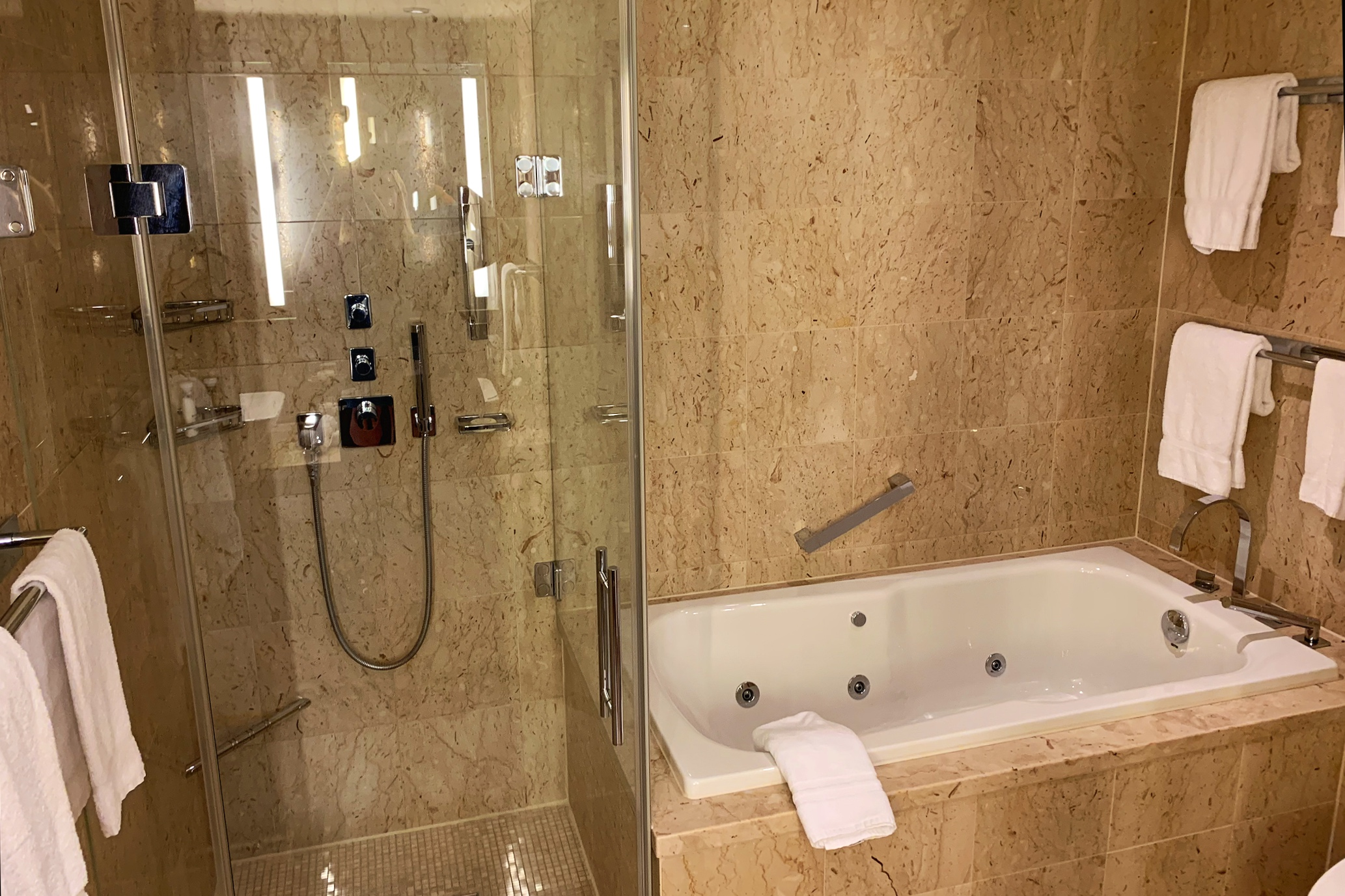 Royal suite bath and shower