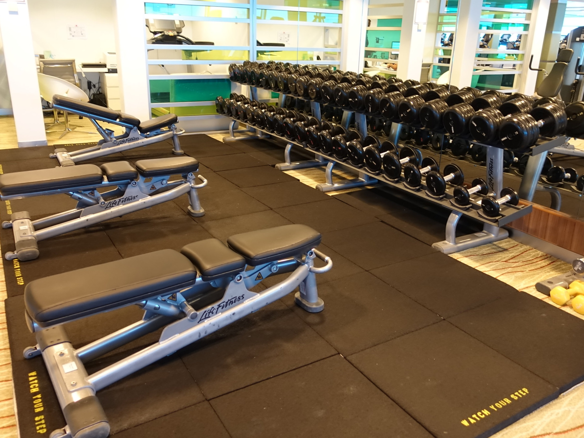 The large free weights area.