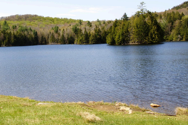 Knapp Brook Pond