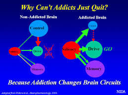 Why addicts can't quit.jpg