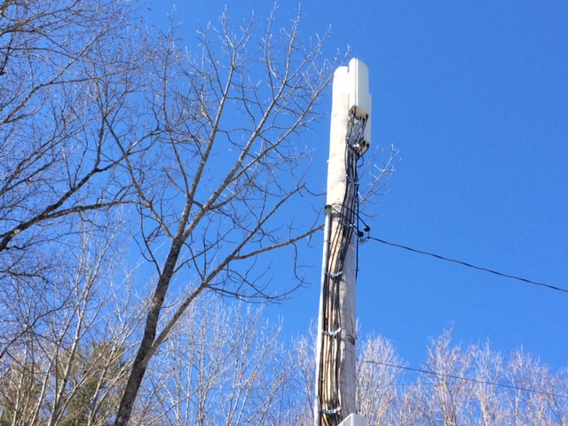 VTel Tower in Cavendish, which already has trees growing above it.