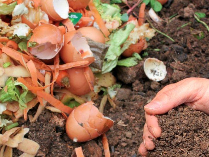 composting_composte_via_shutterstock-1473828312-3176.jpg