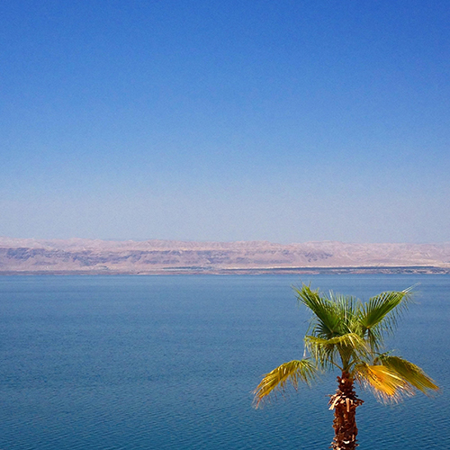 Floated in the Dead Sea. Oh, that's Israel on the other side!!!