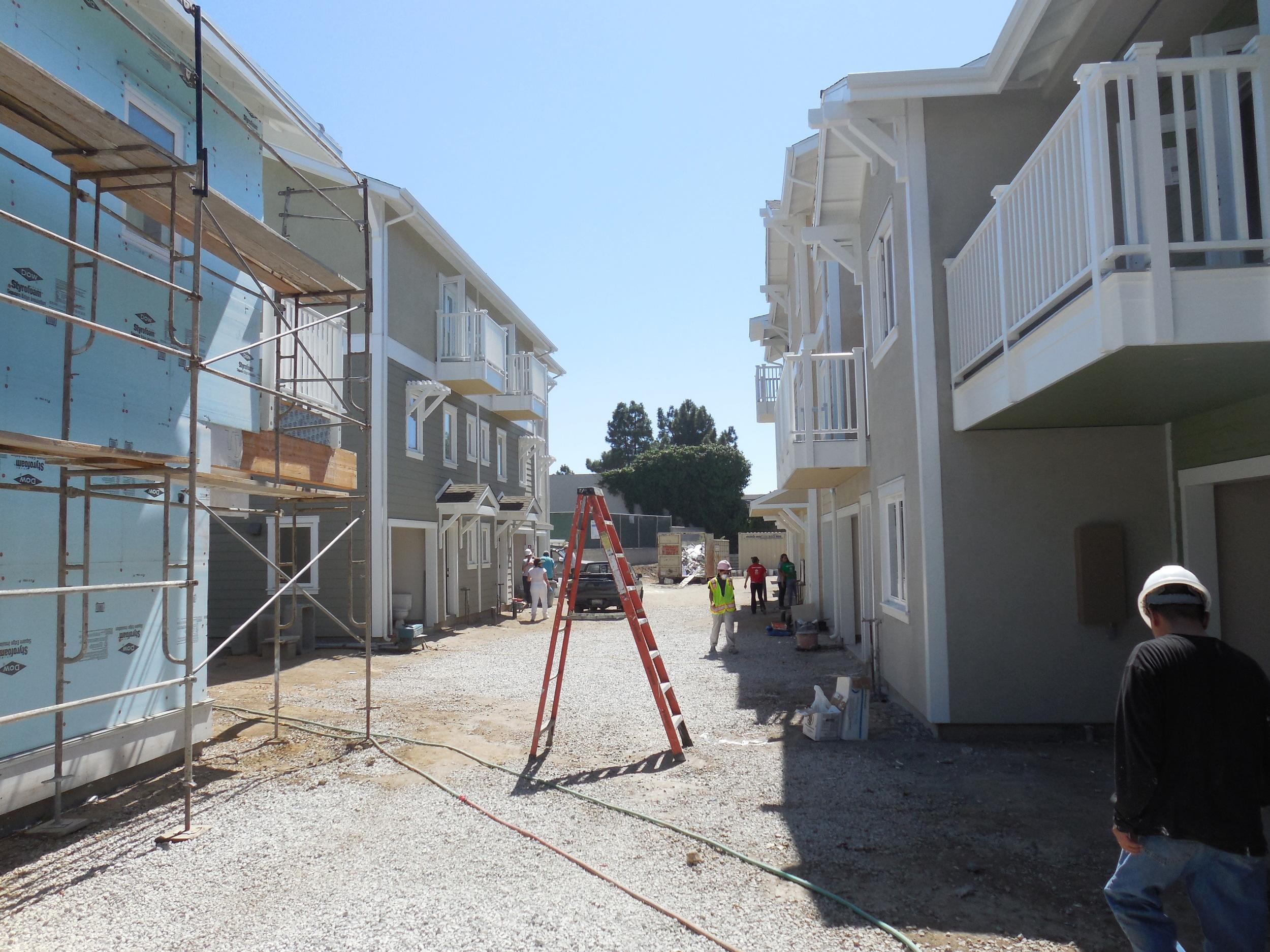 Habitat-construction.JPG