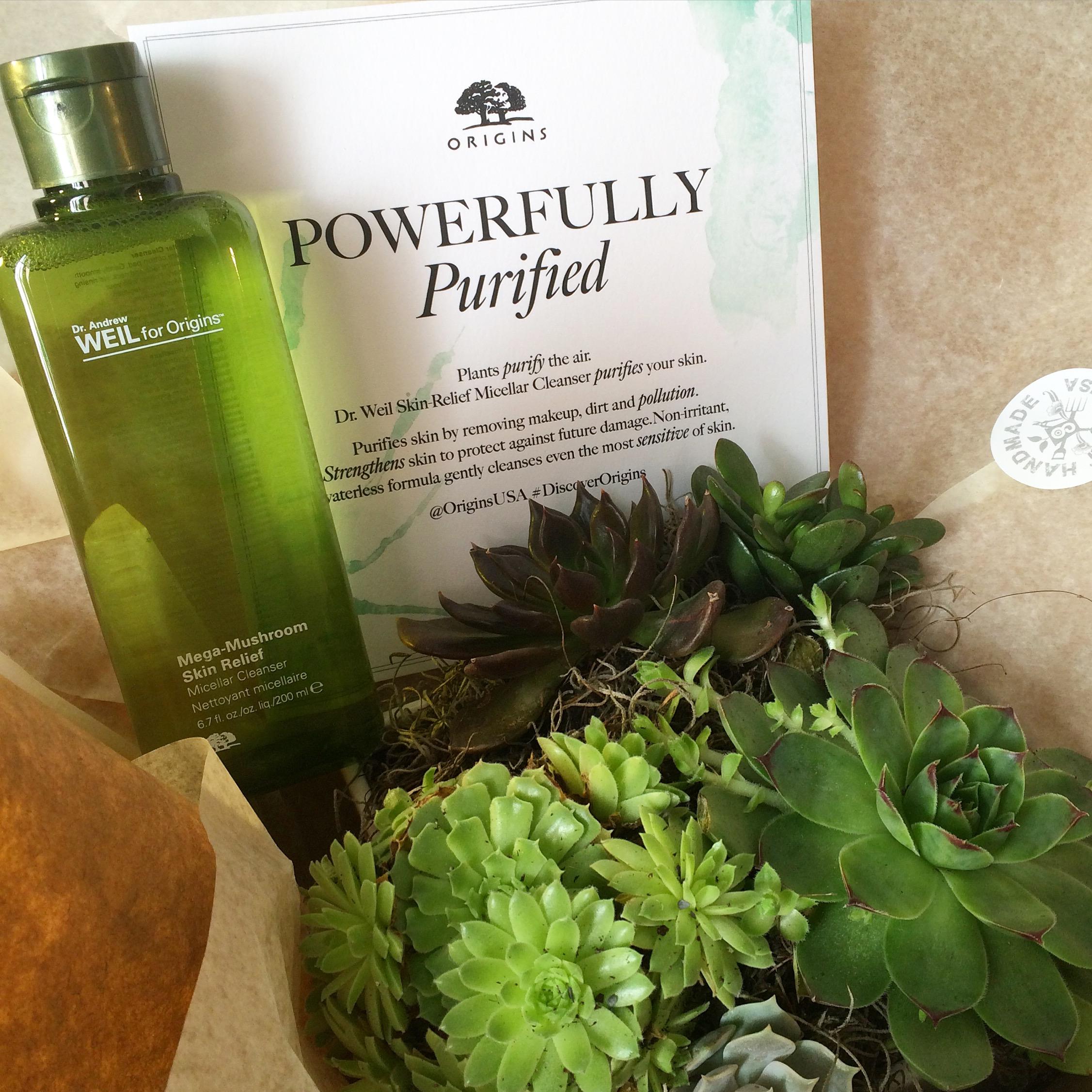 Gardenia Organic web 334.jpeg