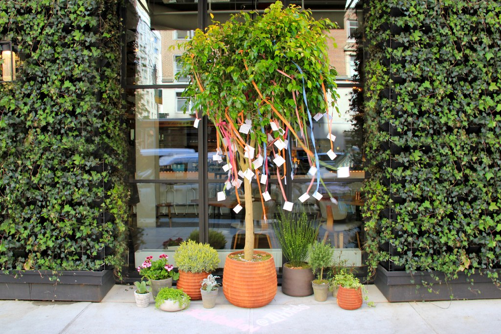 1HotelCentralPark_IntentionTree by Gardenia Organic.jpg