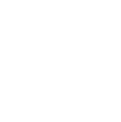 Updated crane logo - Clear - White - crane only copy - Small.png