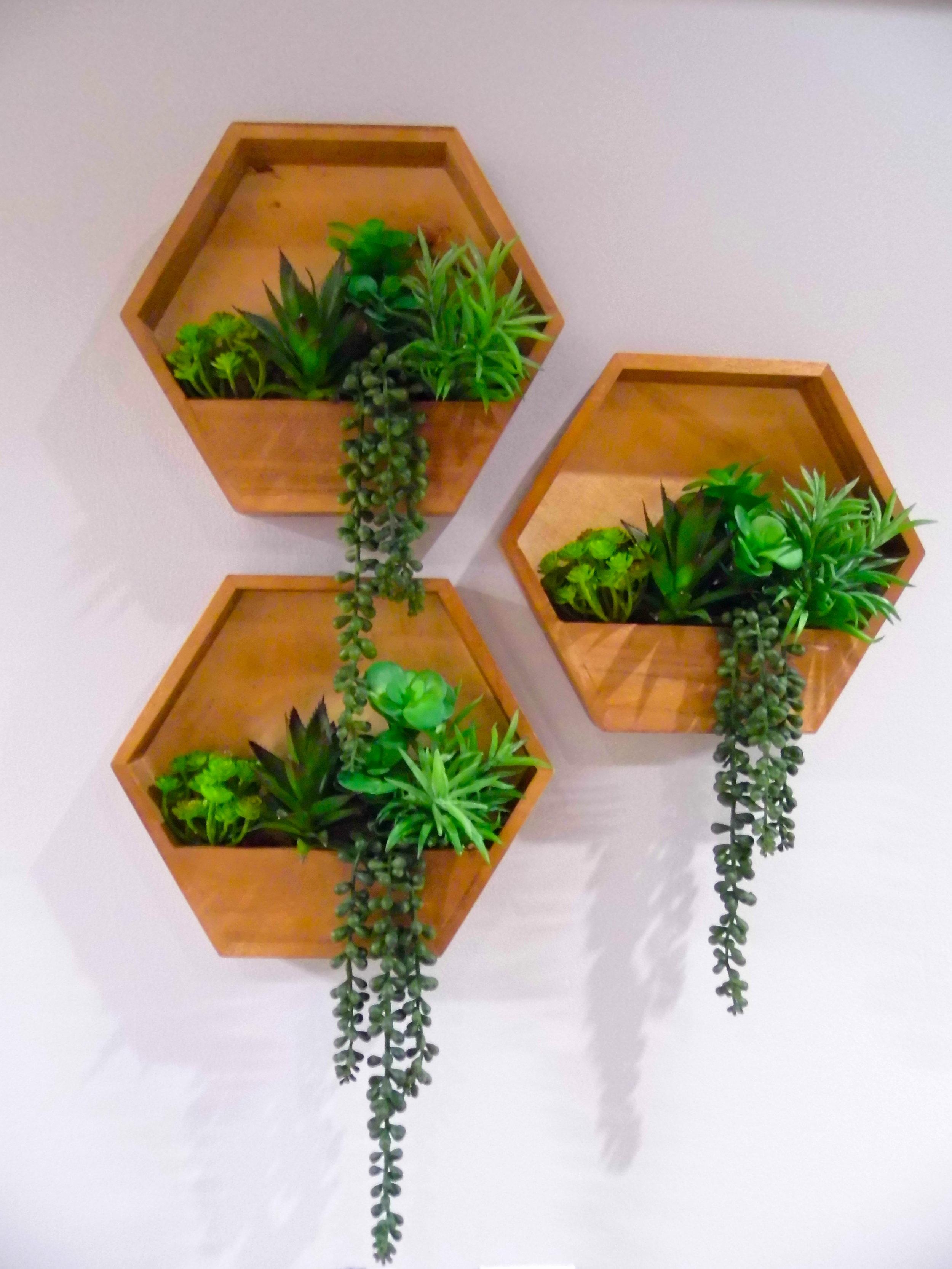 Grandville Plants.JPG