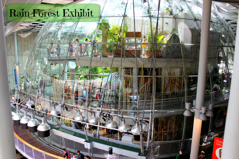 Outside the Rain Forest exhibit, a whole eco system contained inside the dome.